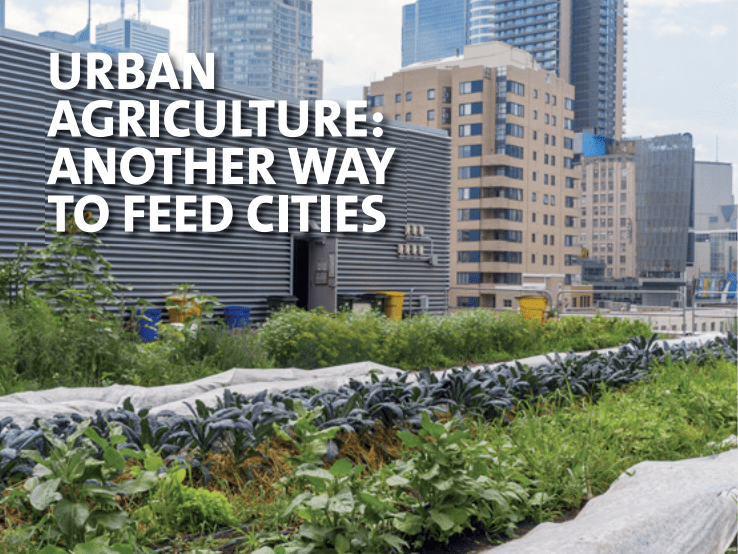 URBAN AGRICULTURE: ANOTHER WAY TO FEED CITIES AGRUPAR